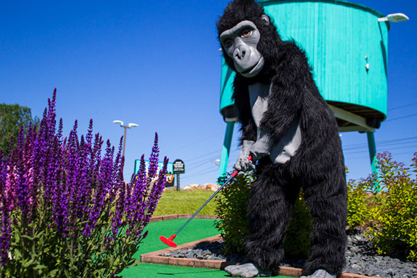 Mongo playing mini golf