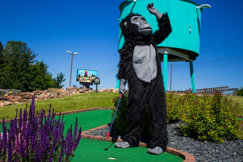 Mongo looking into the distance while playing mini golf.